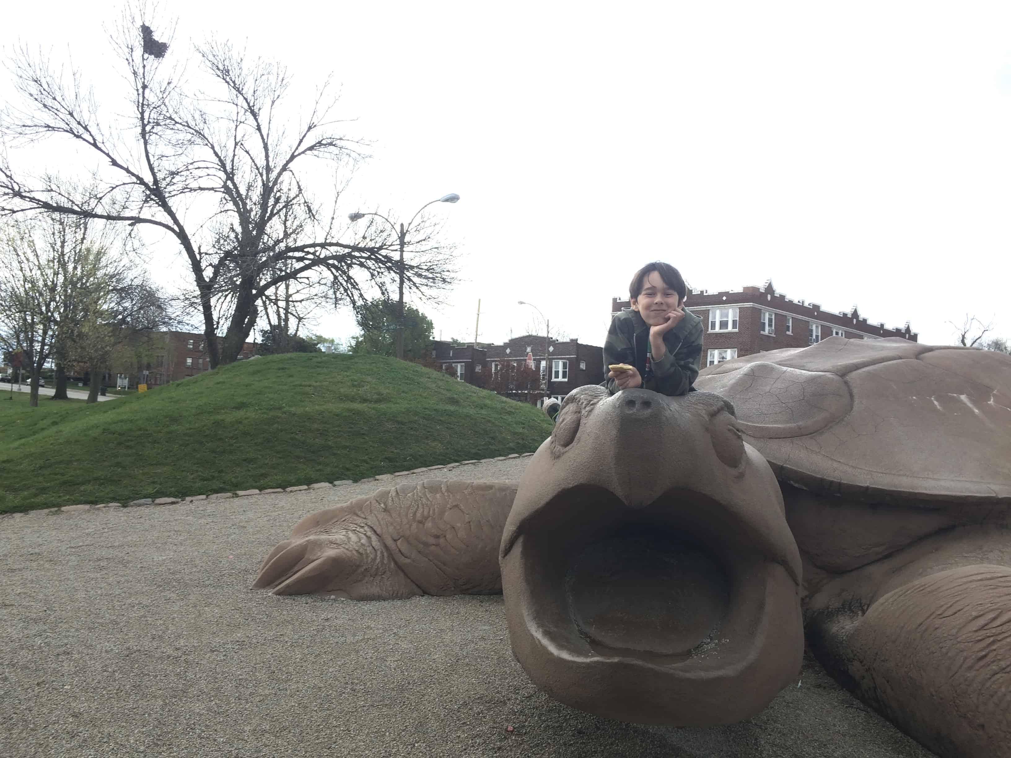 Turtle Playground Saint Louis, family fun in Saint Louis