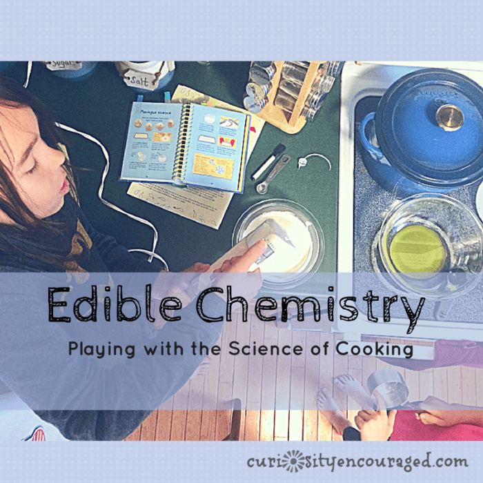 Edible Chemistry, Play with Cooking