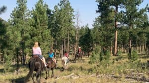 Travel with Kids to South Dakota   Must See Sites & Where to Stay
