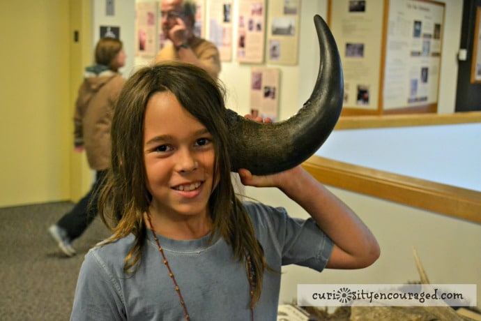 Travel with Kids to South Dakota, Visit Wind Cave, Family Travel, South Dakota