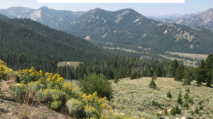 Travel with Kids to Central Idaho   Must See Sites   Places to Play