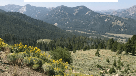 Travel with Kids to Central Idaho | Must See Sites | Places to Play
